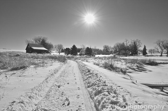 16 winter land
