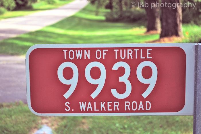 7 Turtle Address